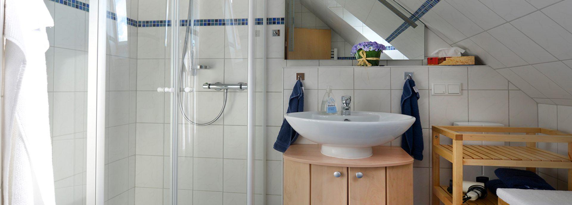 Bad mit Dusche, WC und Waschtrockner